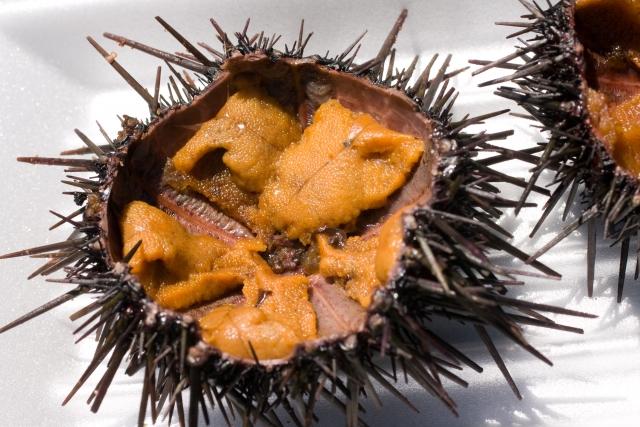 脳食いアメーバが日本でも恐怖 脳を食われたくない人のためのオススメベスト3